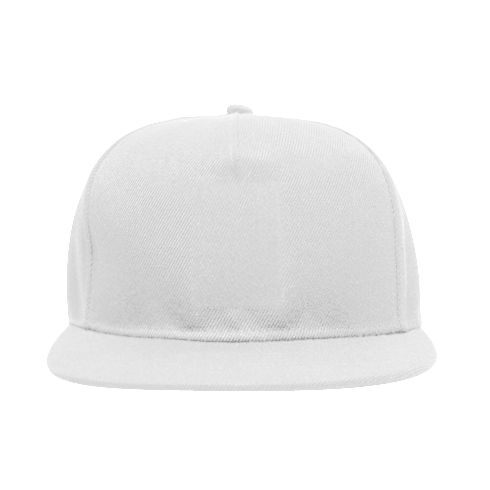 Snapback Be the energy you want to attract