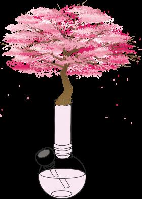 Print Mug 330ml Sakura - PrintSalon