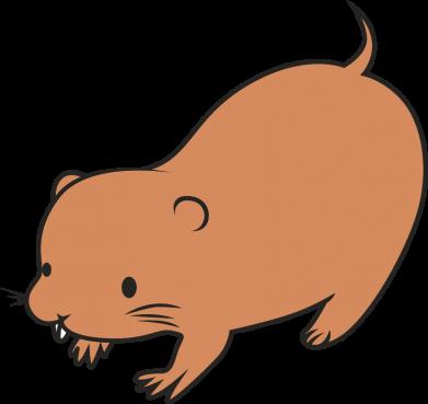 Print Bokserki męskie Little beaver - PrintSalon