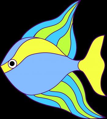 Print Water bottle Colorful fish - PrintSalon