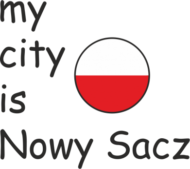 Print Etui na iPhone 11 Pro Max My city is Nowy Sacz - PrintSalon
