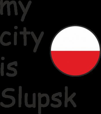Print Etui na iPhone 11 Pro Max My city is Slupsk - PrintSalon