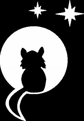 Print Damska koszulka polo Kot siedzi na księżycu - PrintSalon
