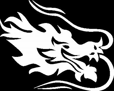 Print Sweatshirt Dragon with fire - PrintSalon