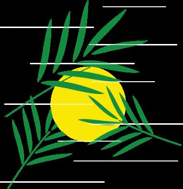 Print Sweatshirt Palm branches - PrintSalon