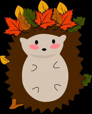 Print Water bottle Hedgehog in the leaves - PrintSalon
