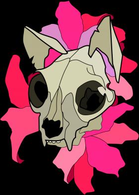 Print Etui na iPhone 11 Skull of a cat - PrintSalon