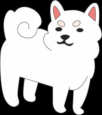 Print Bokserki męskie Angry dog - PrintSalon