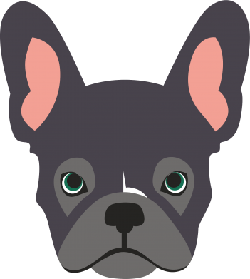 Print Kubek-kameleon Black french bulldog - PrintSalon