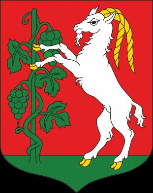 Print Water bottle Lublin coat of arms - PrintSalon