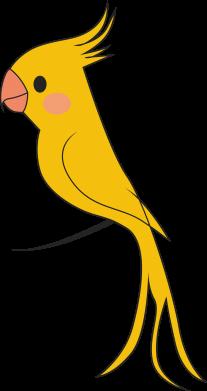 Print Bokserki męskie Yellow parrot - PrintSalon