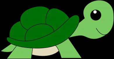 Print Bokserki męskie Baby turtle - PrintSalon