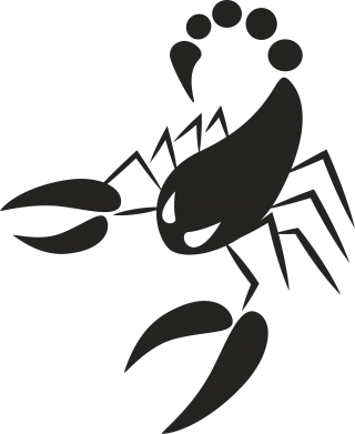 Print Etui na iPhone 11 Zły skorpion - PrintSalon