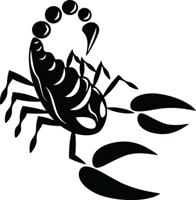 Print Etui na iPhone 11 Czarny skorpion - PrintSalon