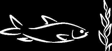 Print Notes Maleńka rybka - PrintSalon