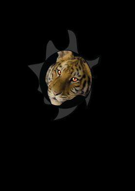 Print Etui na Xiaomi Redmi 7 Tygrysie oczy - PrintSalon