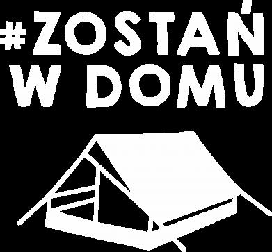 Print Damska koszulka V-neck Bądź w domu - PrintSalon