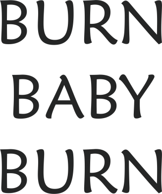 Print Etui na Xiaomi Mi6 Burn baby burn - PrintSalon