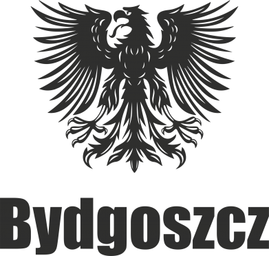 Print Etui na iPhone 11 Pro Max Bydgoszcz - PrintSalon