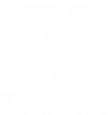 Print Męska bluza z kapturem Katowice - PrintSalon