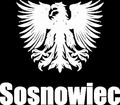 Print Bluza (raglan) Sosnowiec - PrintSalon
