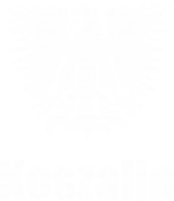Print Damska koszulka polo Koszalin - PrintSalon