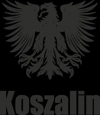 Print Etui na iPhone 11 Pro Max Koszalin - PrintSalon
