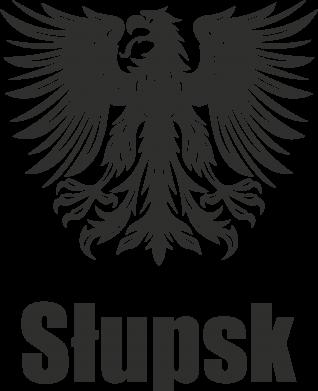Print Etui na iPhone 11 Pro Max Słupsk - PrintSalon