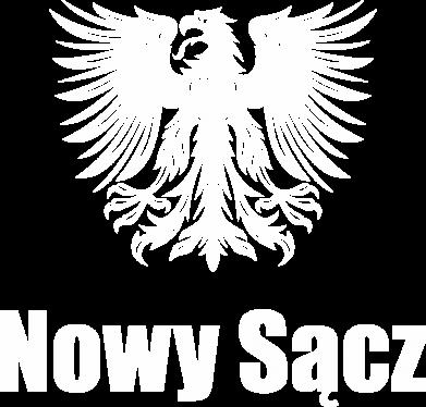 Print Bluza (raglan) Nowy Sącz - PrintSalon