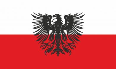 Print Sweatshirt Polish flag and coat of arms - PrintSalon