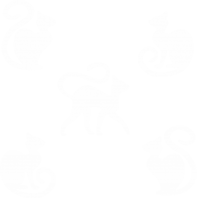 Print Notes 5 kotów - PrintSalon