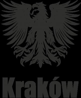 Print Etui na iPhone 11 Pro Max Kraków - PrintSalon