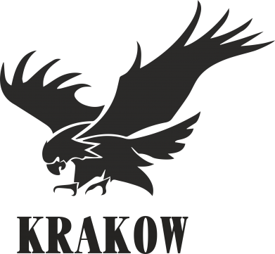 Print Etui na Xiaomi Mi6 Krakow eagle - PrintSalon