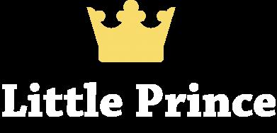 Print Men's hoodie Little prince - PrintSalon