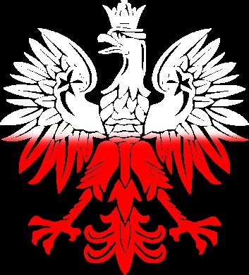Print Męska bluza z kapturem Polski orzeł - PrintSalon