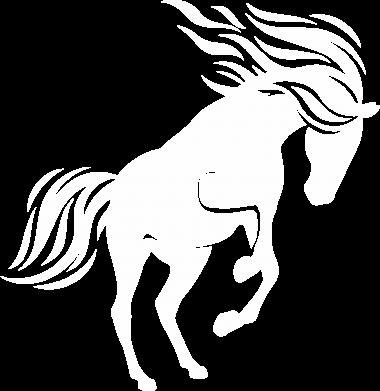 Print Slipy męskie Koń - Printsalon