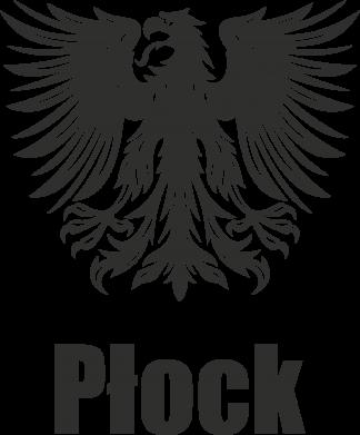 Print Etui na iPhone 11 Pro Max Płock - PrintSalon