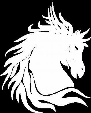 Print Męska premium koszulka Portret konia - Printsalon