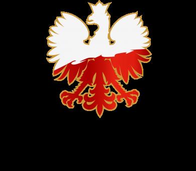 Print Etui na Xiaomi Redmi Note 9/Redmi 10X Orzeł Polska - PrintSalon