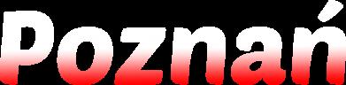 Print Bluza (raglan) Poznań - PrintSalon