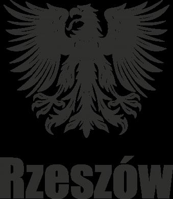 Print Etui na iPhone 11 Pro Max Rzeszów - PrintSalon