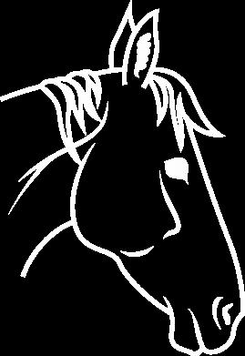 Print Sweatshirt Horse portrait lines profile - PrintSalon