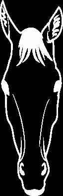 Print Damska koszulka polo Horse portrait with lines - PrintSalon