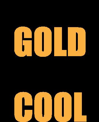 Print Etui na Xiaomi Mi6 Shine like a gold & be cool - PrintSalon