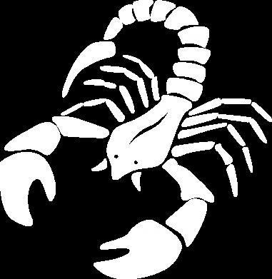 Print Bluza (raglan) Scorpio - PrintSalon