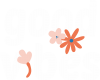 Good vibes flowers