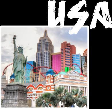 Print Etui na iPhone 5/5S/SE USA - PrintSalon