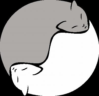 Print Bokserki męskie Cats love black and white - PrintSalon