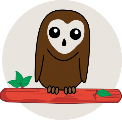Print Sweatshirt Funny owl - PrintSalon