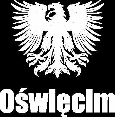 Print Męska bluza z kapturem Oświęcim - PrintSalon